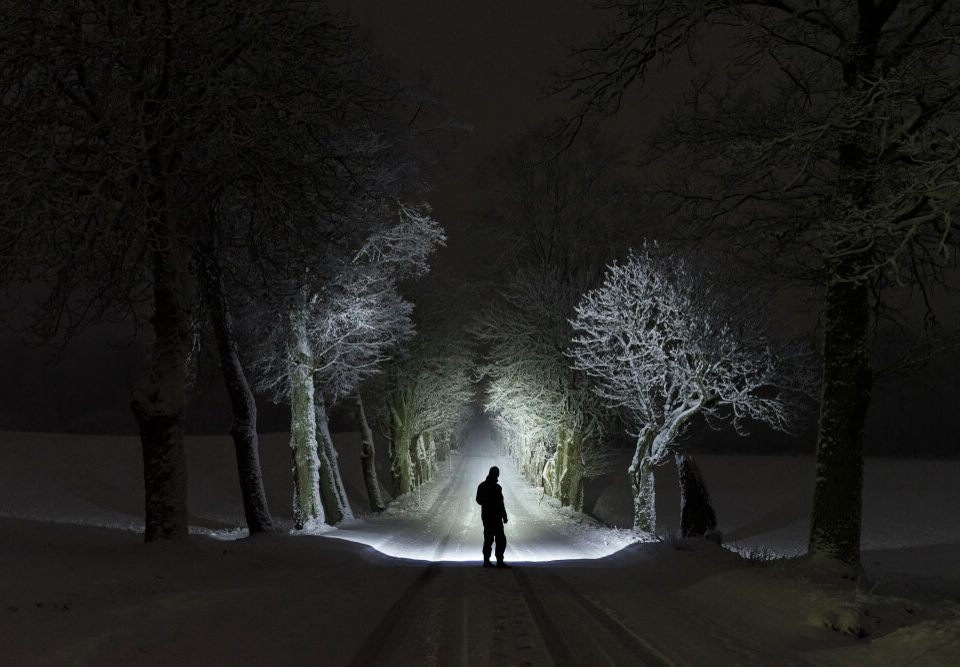 Man standing outdoors at night in tree alley shining with flashlight.