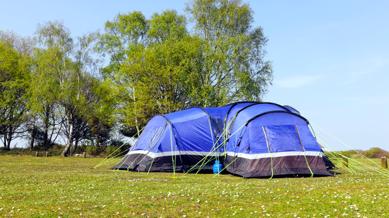 Big blue family tent pitched in a spring meadow with wildflowers, next to birch trees, on the edge of plain in the New Forest , United Kingdom .