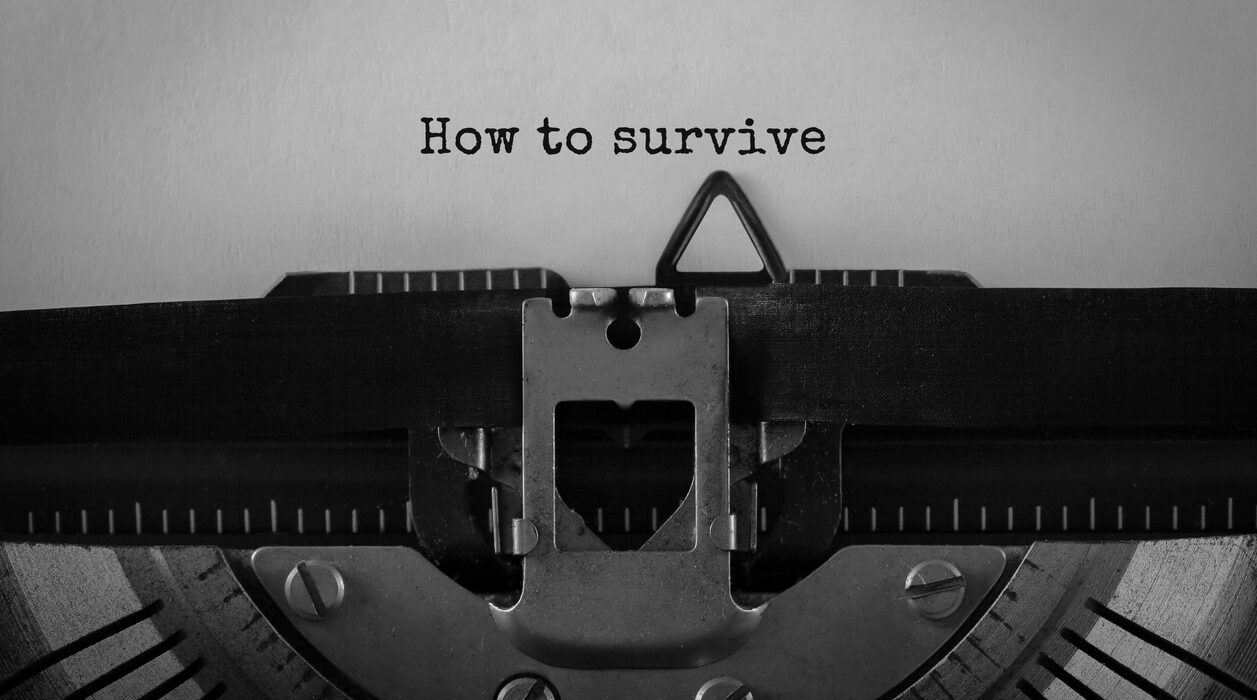 how to survive text typed in a typewriter